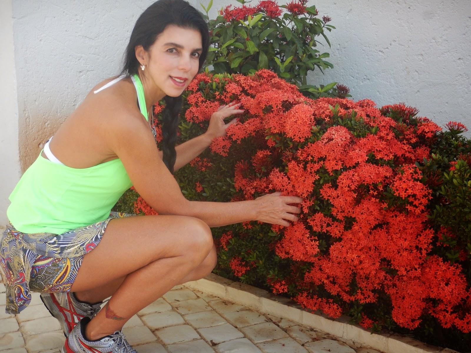 Blog da Adriana Alvim Ixora  jardim florido e protegido