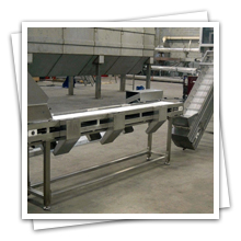 Food Conveyor Belt Manufacturer, Food Conveyor Belt Exporter, Food   Conveyor Belt Supplie, Food Conveyor Belt Gujarat, Conveyor Belt In Modular for Frozen Food,   Inclined Inspection PVC Belt