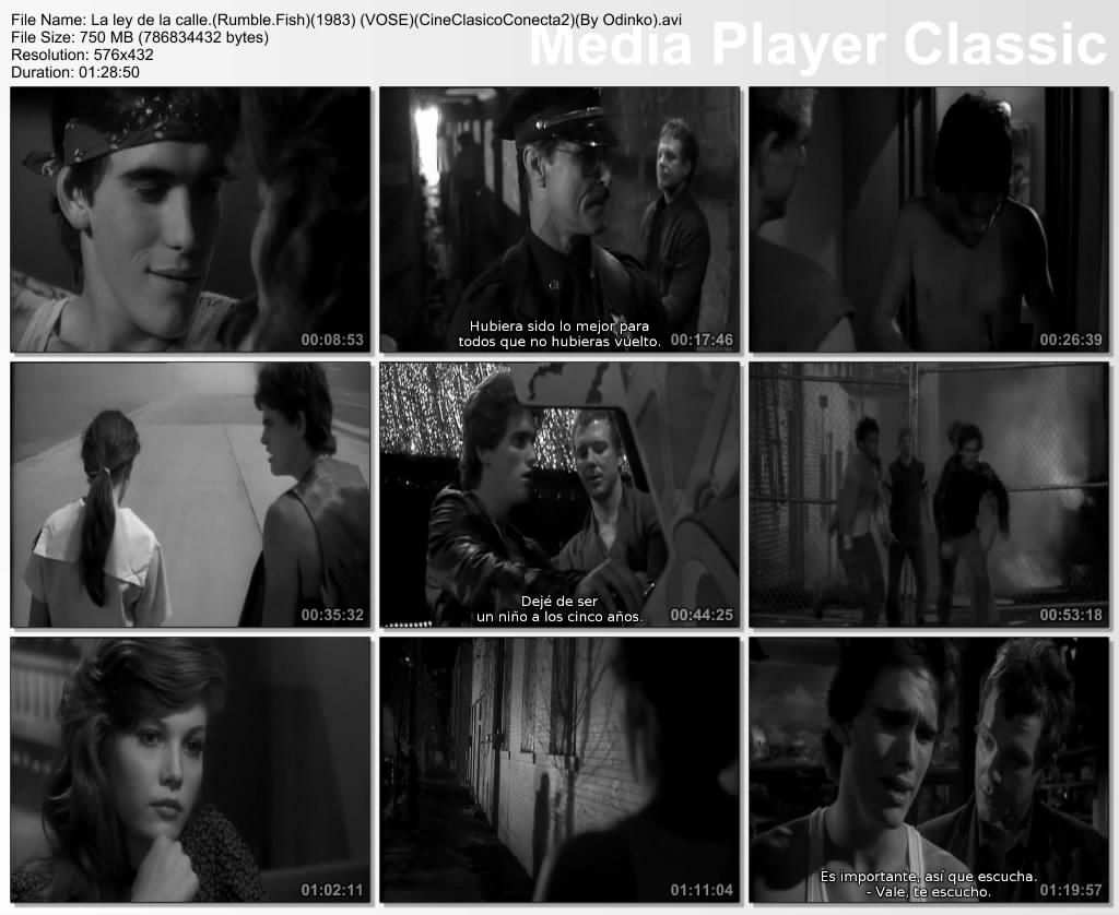 http://2.bp.blogspot.com/-pG0tY8HpLUg/T131E-q8OpI/AAAAAAAAF6s/lCMGsGrl3ik/s1600/La+ley+de+la+calle.(Rumble.Fish)(1983)+(VOSE)(CineClasicoConecta2)(By+Odinko).avi_thumbs_%5B2012.03.09_21.34.35%5D.jpg