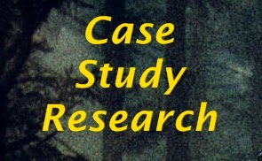 Research Paradigm   Case Study  Quantitative  Qualitative   ppt