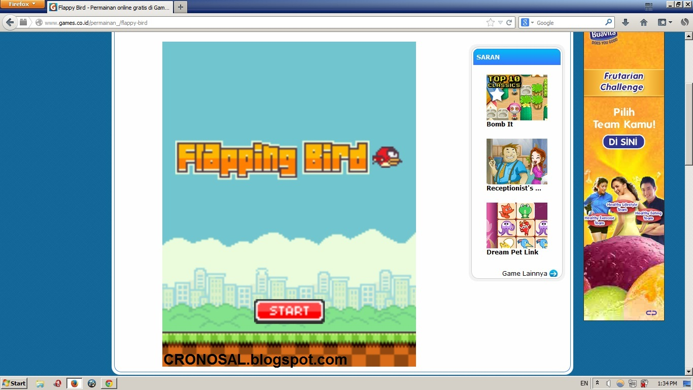 Cara Mendownload Game Flash Online jadi Offline