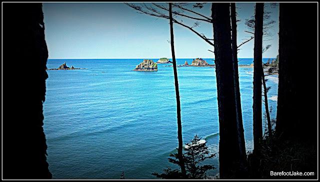 south olympic coast