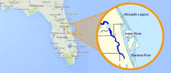 Where Exactly Does Indian River Citrus Come From - Indian river lagoon map