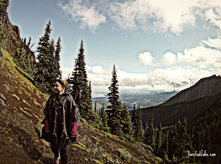 olympic national park poncho