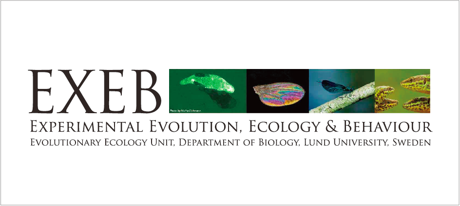 Experimental Evolution, Ecology and Behaviour (EXEB)