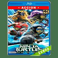 Tortugas Ninja 2: Fuera de las sombras (2016) 4K Audio Dual Latino-Ingles