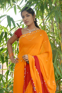 Keerthi Saree Pictures (3)