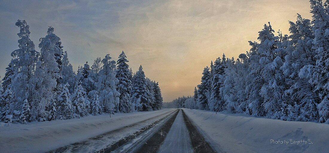 Photos by Birgitta B.