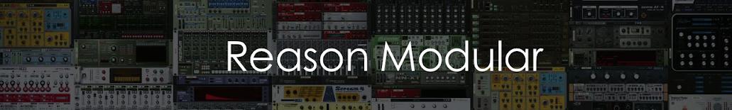 Reason Modular