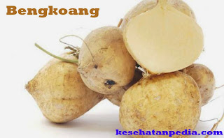 Khasiat Bengkoang