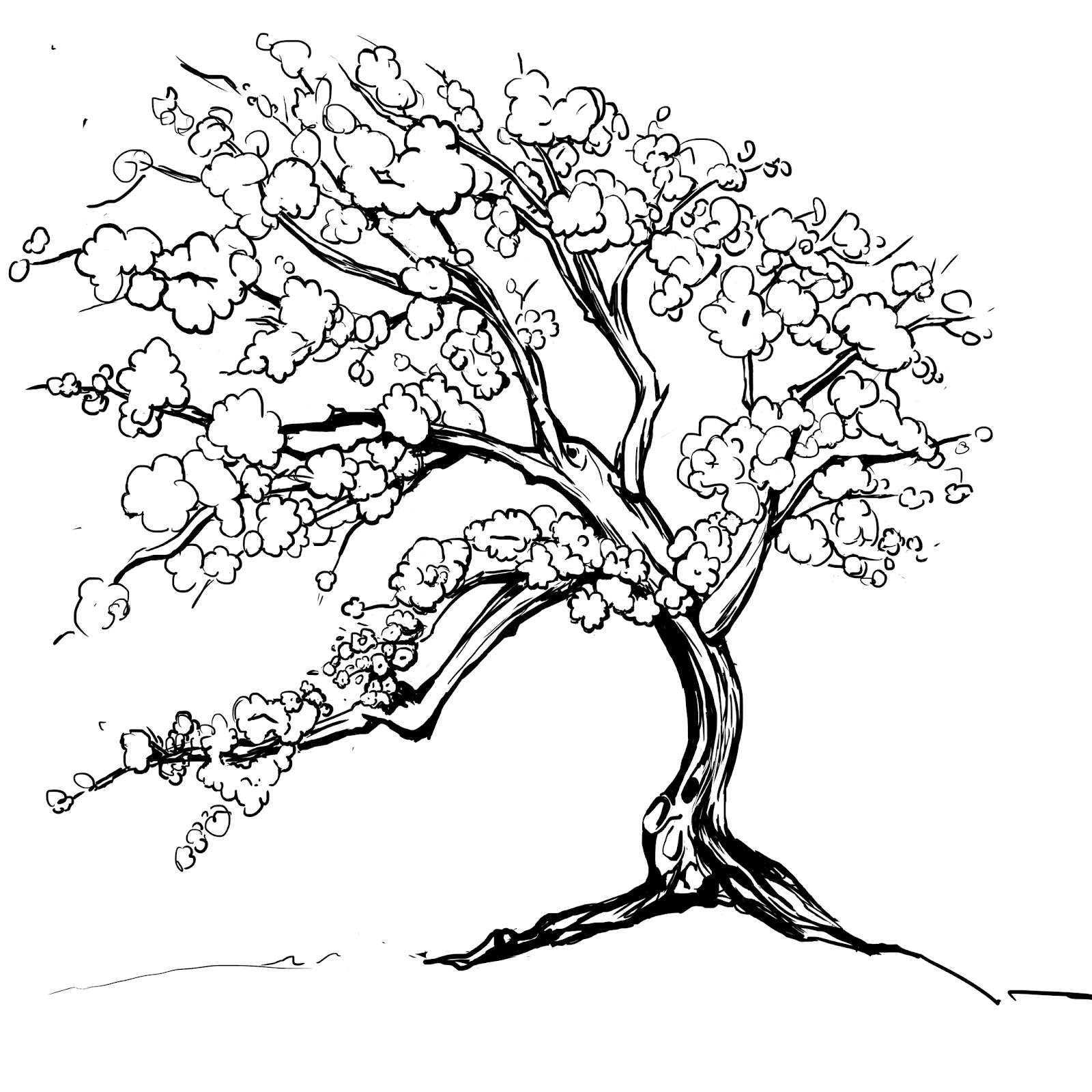 requested a sakura tree to complement a previously finished tattoo - Cherry Blossom Tree Coloring Pages