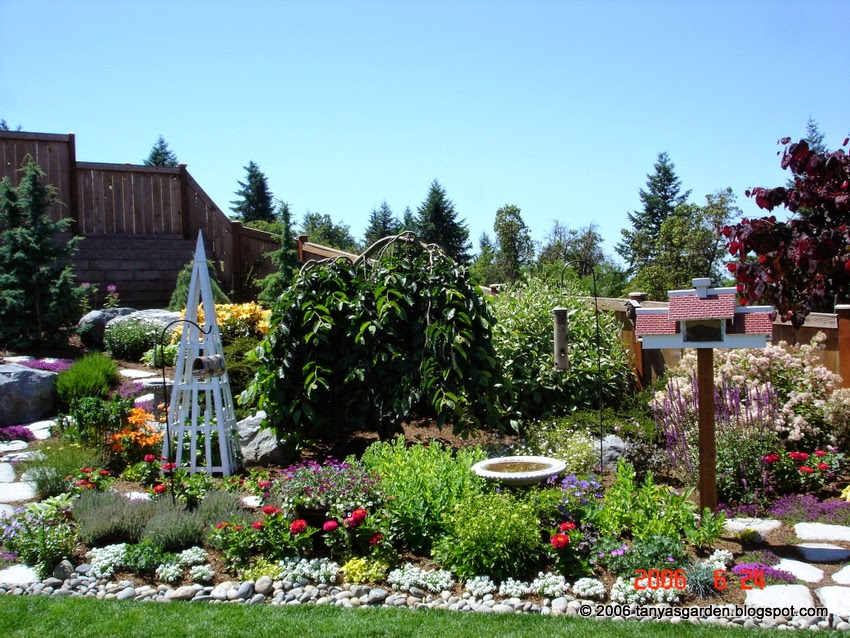 Exciting Gardens