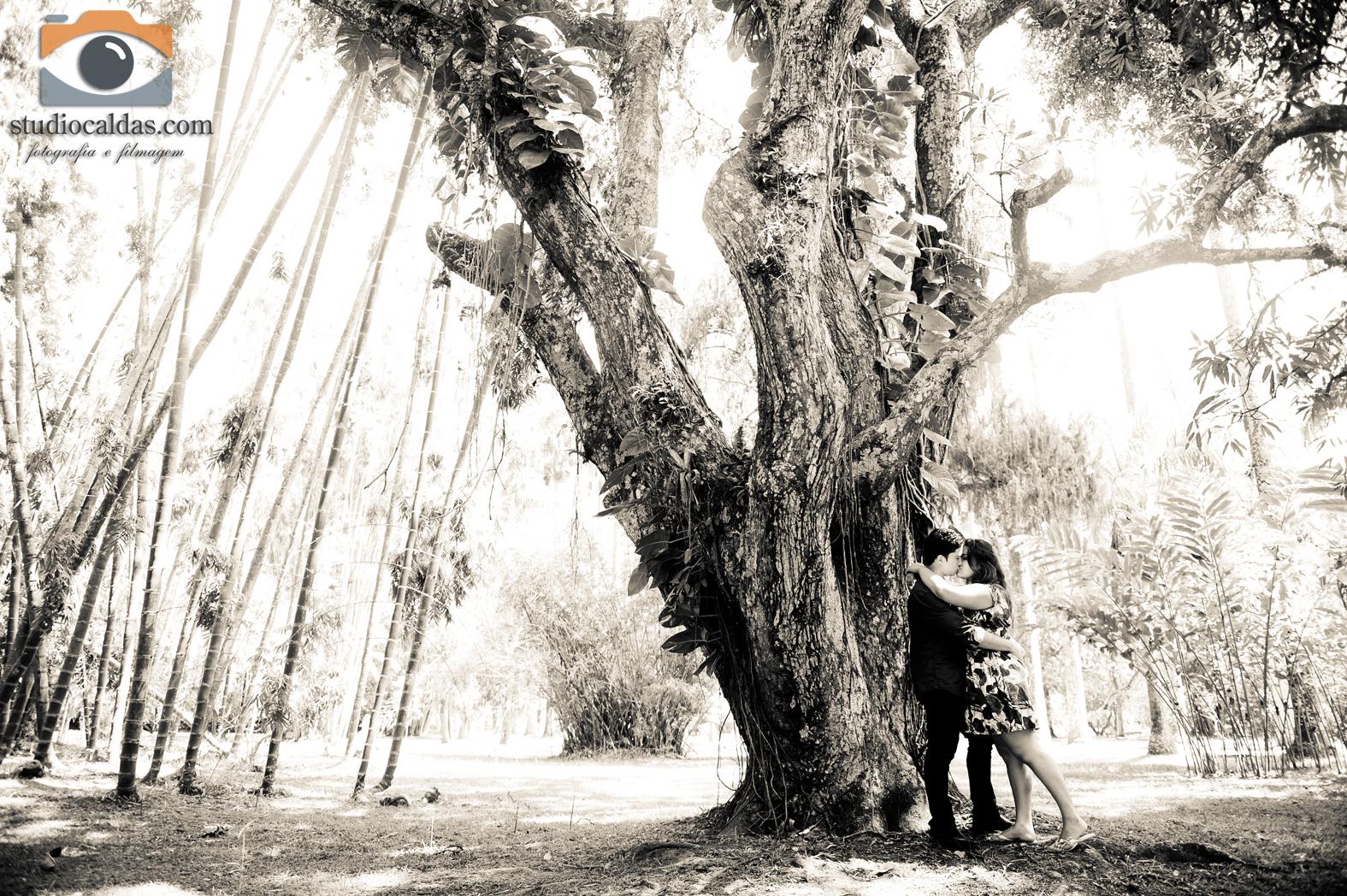 casamento no jardim botanico rio de janeiro ? Doitri.com