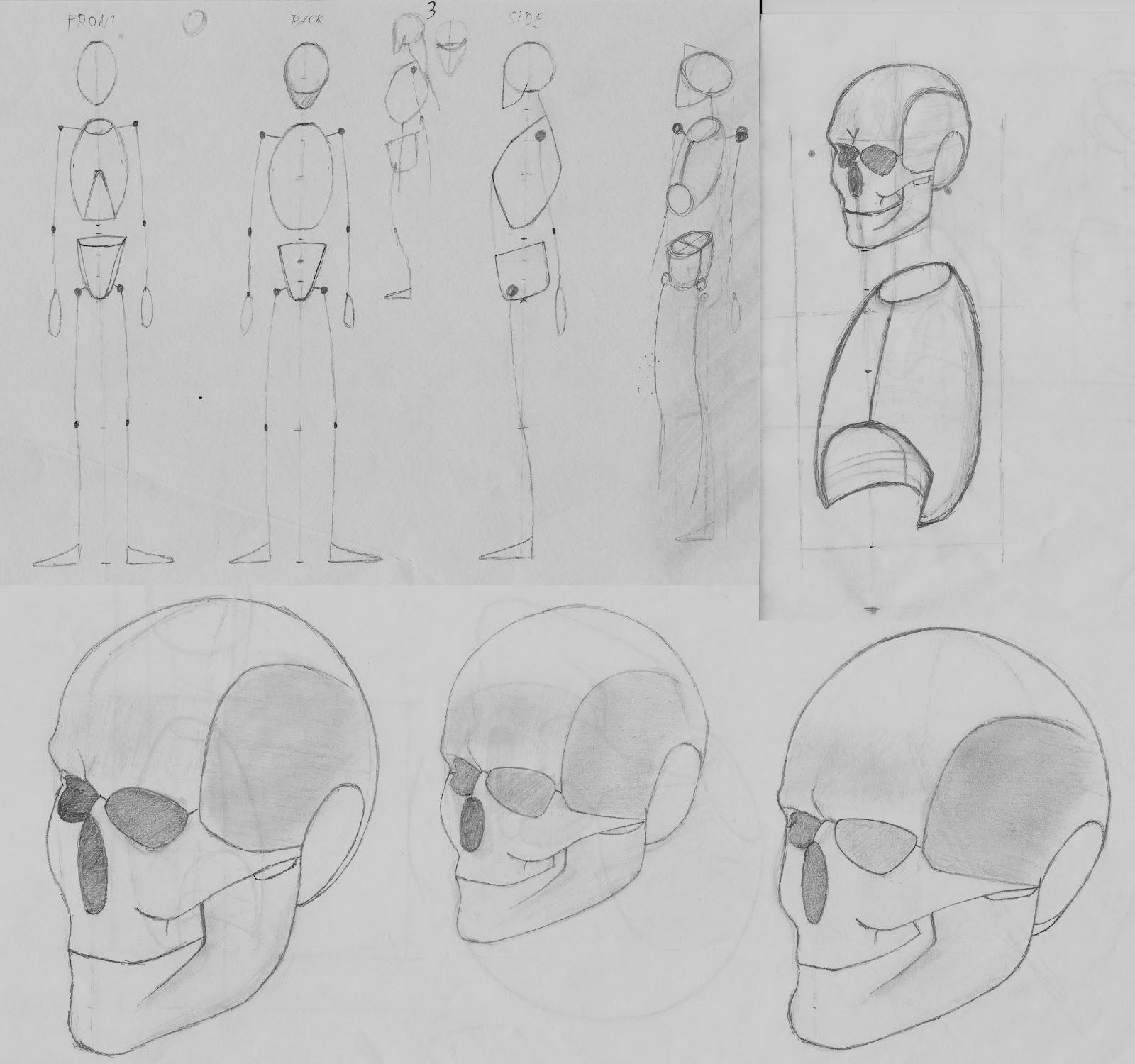 Elod Horvath - University Blog: Drawing anatomy