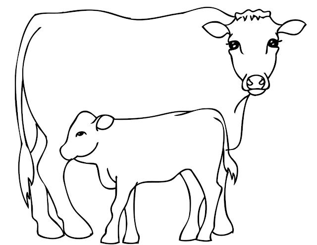 desenhos de colorir mam e vaca e bezerro para imprimir