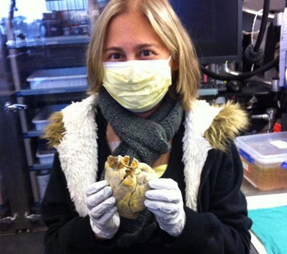 صورة مراهقة أميركية.. تحمل قلبها بين يديها