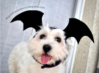 Dog with bat wings hat