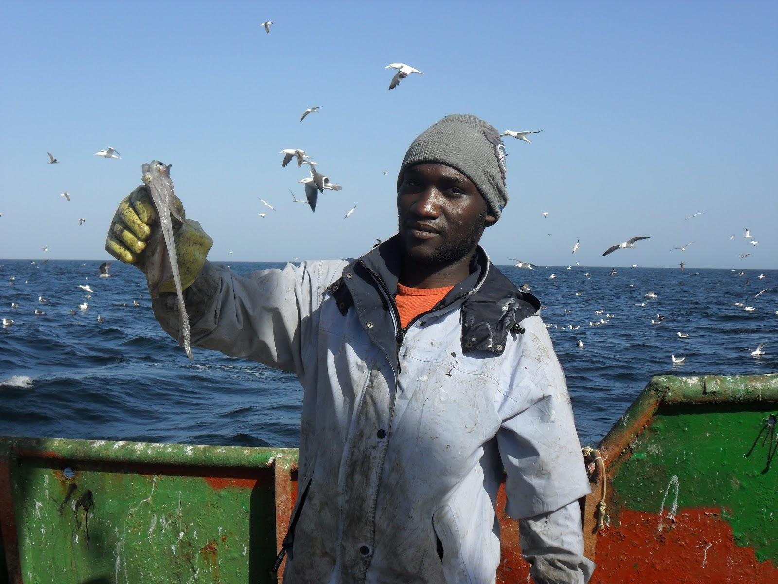 الصيد البحري المحظور في موريتانيا