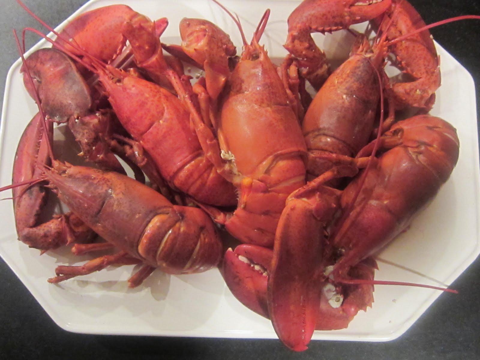 Betty Rosbottom: The Great Lobster Debate