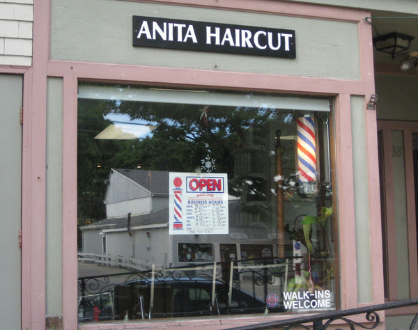 Anita Haircut, funny salon names