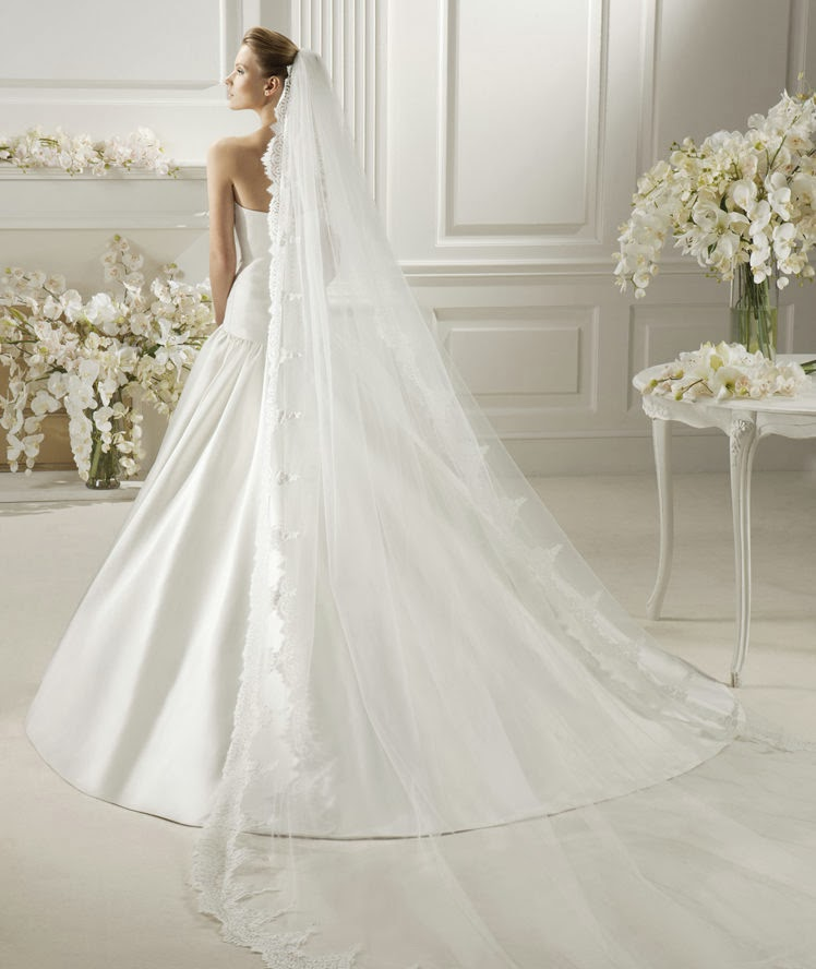 Link camp bride dress and veils collection 2014 1 for Wedding dress with veil
