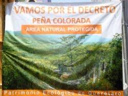 SE PIERDEN 32 HECTAREAS DE PEÑA COLORADA