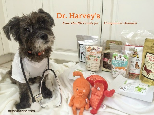 Dr. Oz the Terrier with Dr. Harvey's line of pet food and treats