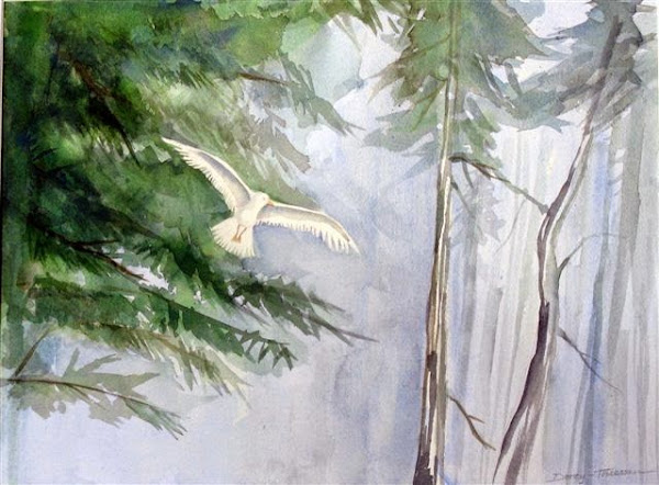 bird soaring through the forest