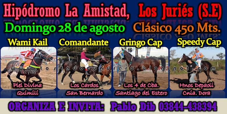 CLASICO JURIES 450