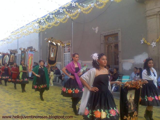 Estandartes Guadalupanos