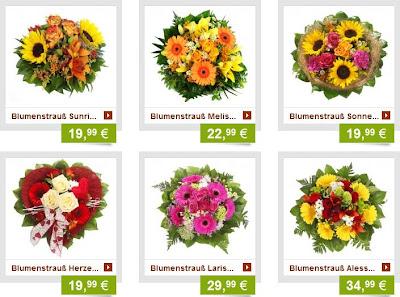 stubenblumen.de