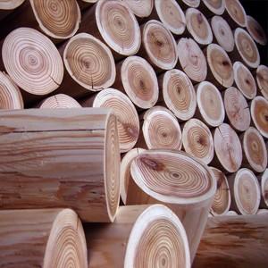 Via The Little Log Company