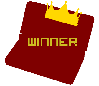 Nintendo 3DS Winner