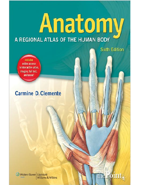clinical kinesiology and anatomy 6th edition pdf