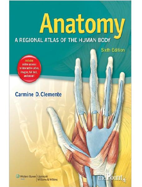clinical kinesiology and anatomy 6th edition pdf