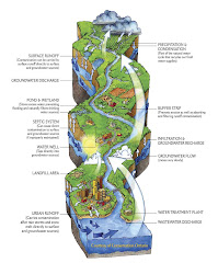 Illustrated Watershed