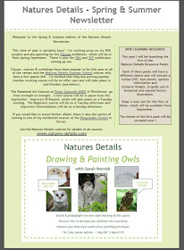 Natures Details Newsletter - Spring & Summer Edition 2015