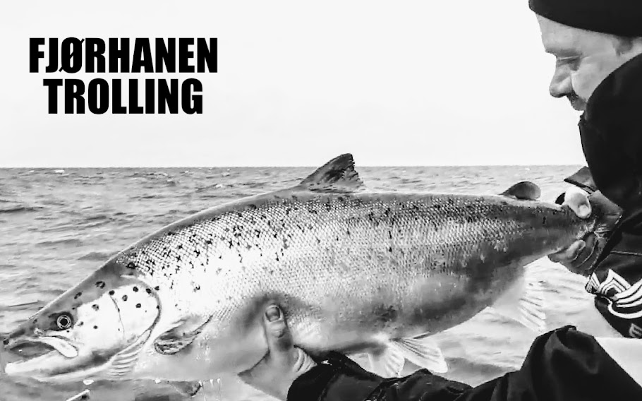 FJØRHANEN TROLLING