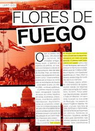 Revista PROFASHIONAL - Novembro de 2012