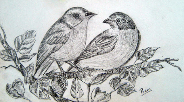 Beautiful Pencil Sketches Of Love Birds | www.pixshark.com ...