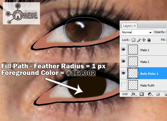 cara membuat vector bola mata di photoshop - tutorial membuat vector di photoshop - membuat foto menjadi kartun dengan photoshop