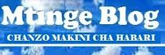 Mtinge Blog