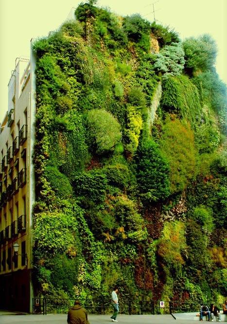 Verde capim verde urbano nel mondo - Giardino verticale madrid ...