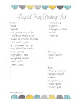 Free Printable Hospital Bag Check List