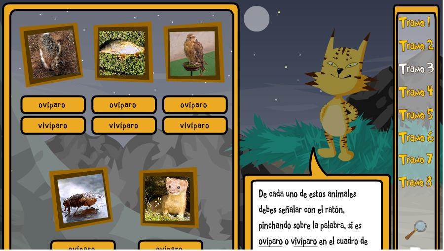 Animales ovíparos Vocabulario para imprimir  - fotos de animales oviparos