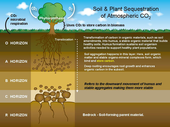 Land resource management introduction to soil sst 5201 for Soil as a resource introduction