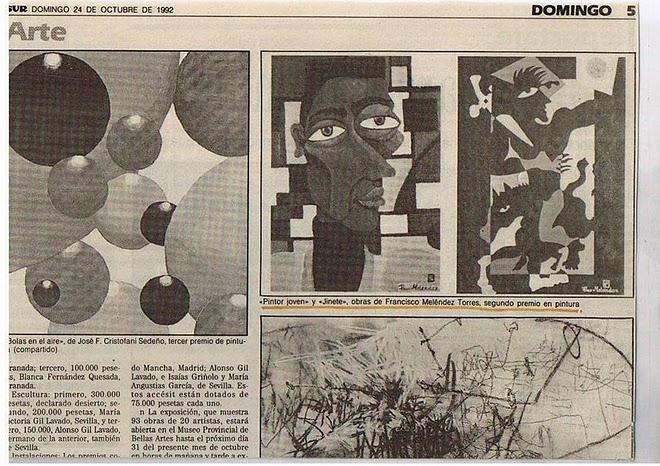 """""""DIARIO SUR 1992"""""""