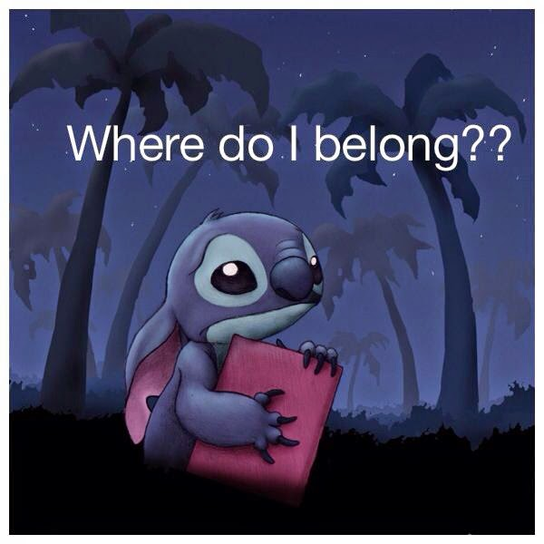 Stich - Where do I belong?