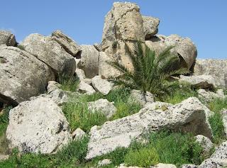 Überreste des Tempels G von Selinunt