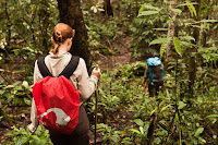 trekking in the rainforest